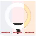 金贝 LR-360C(14寸)LED环形灯直播补光灯